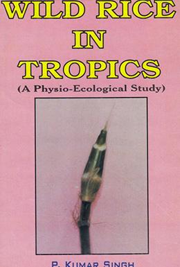 Wild Rice in Tropics